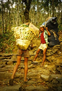 Two Napali villagers, one carrying the doko with lamlo over the head, the other with a different shaped load still using the tumpline head strap system
