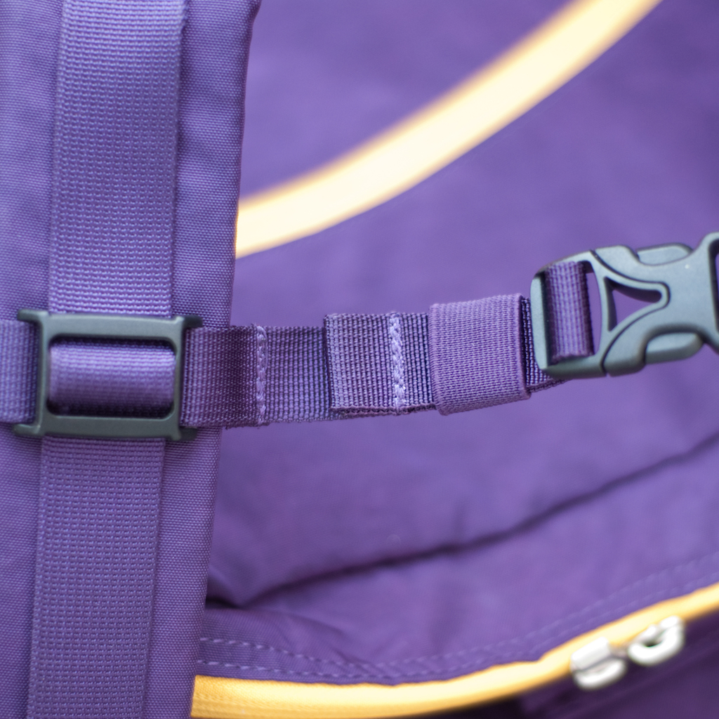 BackTpack 4 sternal strap detail